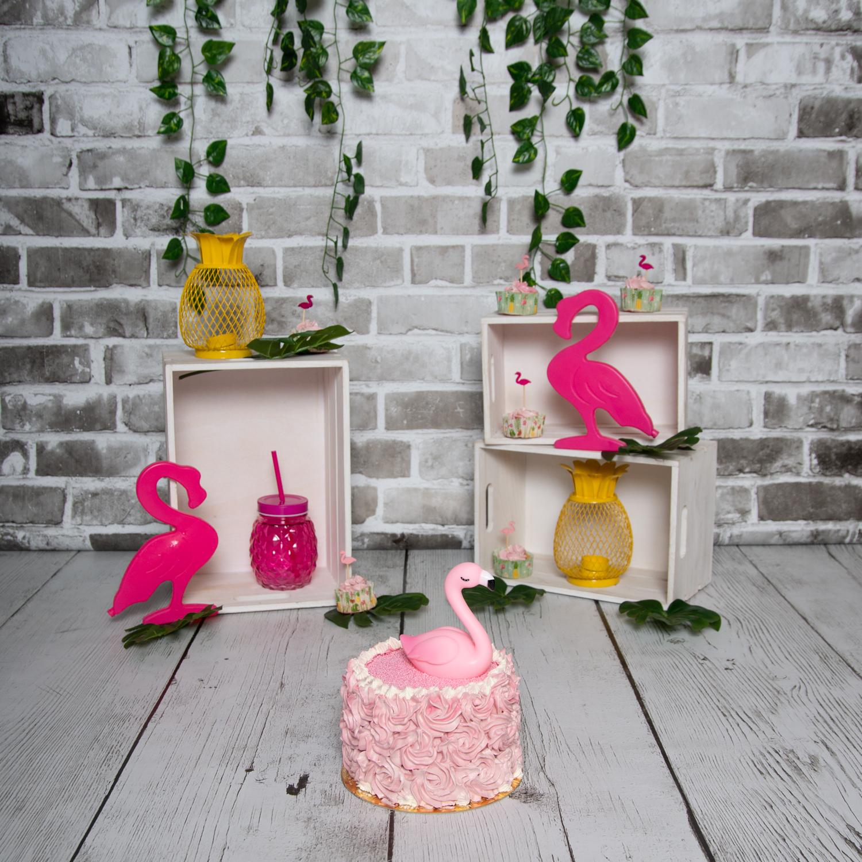 Smash the cake flamand rose - Saint Maur des Fossés
