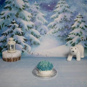 Smash the cake sur le thème hiver