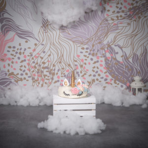Smash the cake licorne Paris