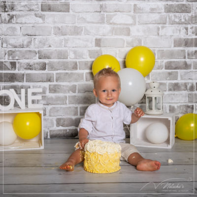 Photographe bébé : Smash the Cake dans le 94